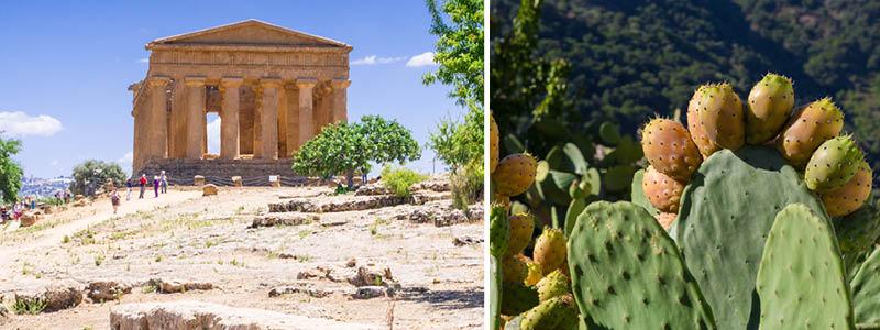 Sicilien: Tempeldalen ved Agrigento