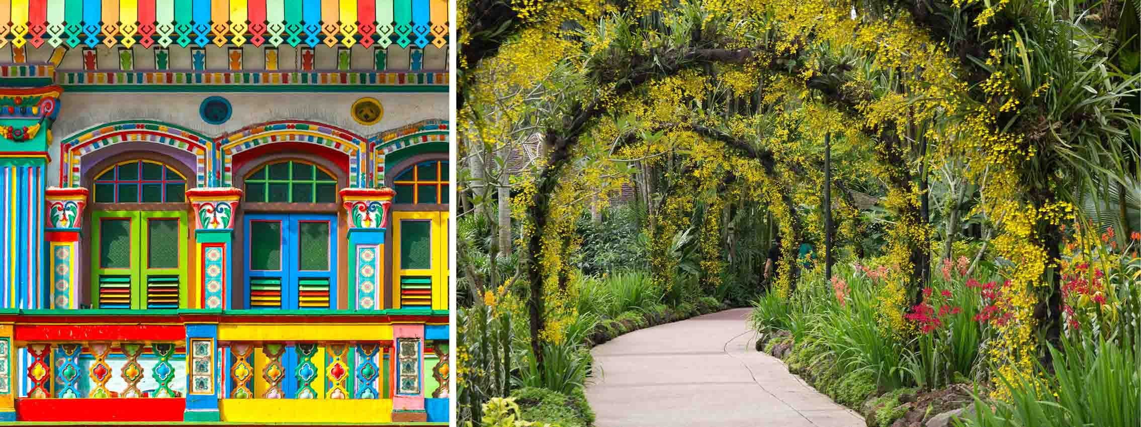 Little India og botanisk have i Singapore