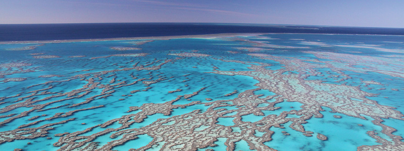 Great Barrier Reef i Australien