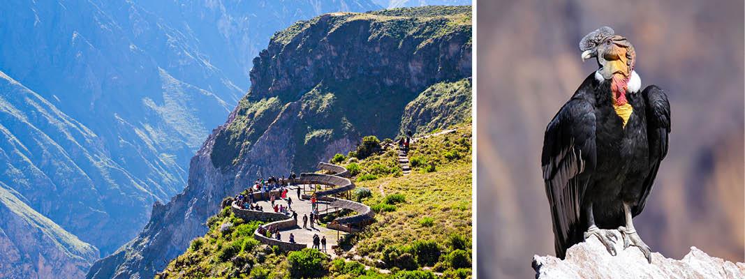 Rundrejse I Peru Med Rejseleder L Kulturrejser Europa