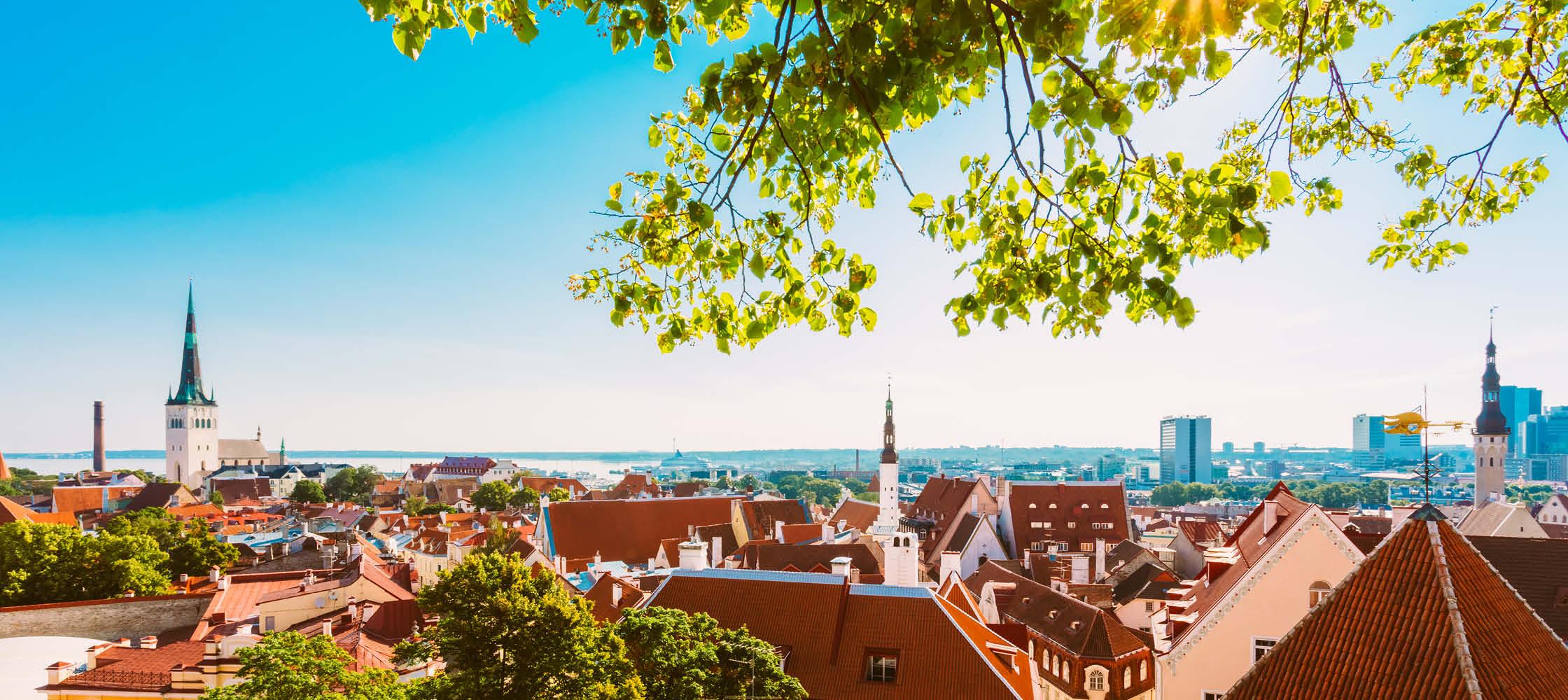 Udsigt over danskerbyen i Tallinn
