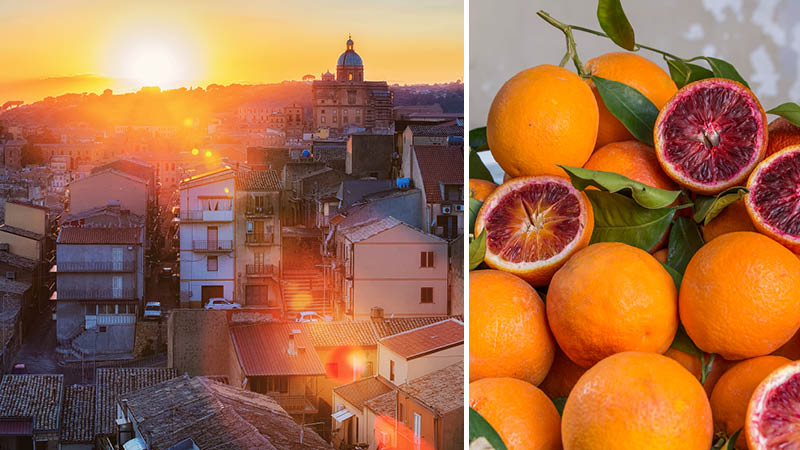 Solnedgang og blodappelsiner p� Sicilien