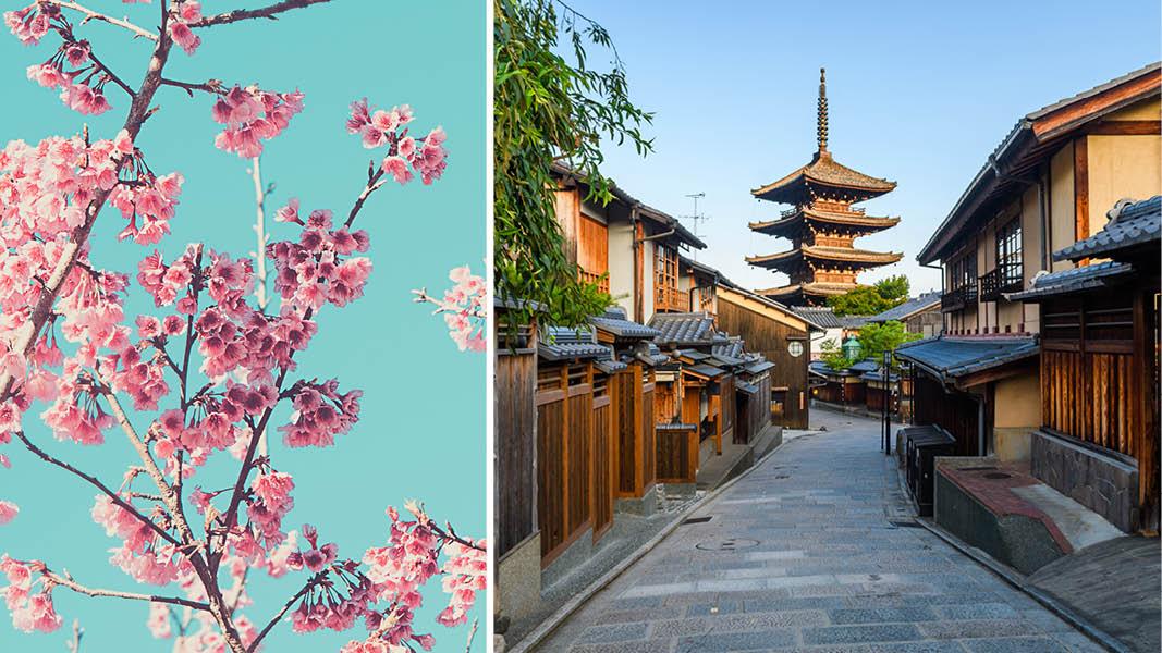 Oplev Japan med Kulturrejser