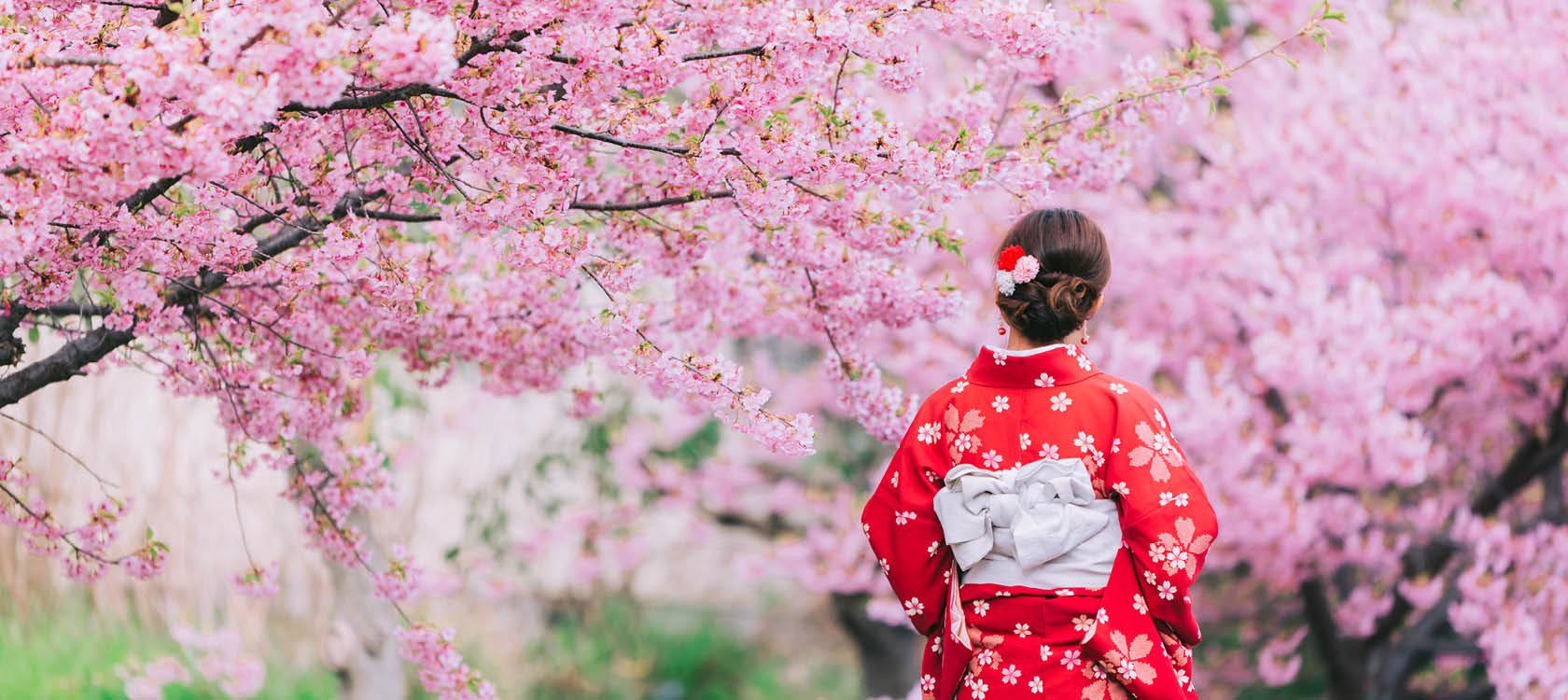 Oplev det blomstrende forår i Japan med Kulturrejser
