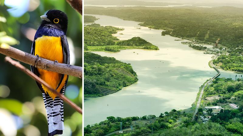 Nyd turen ad Panamakanalen med Kulturrejser