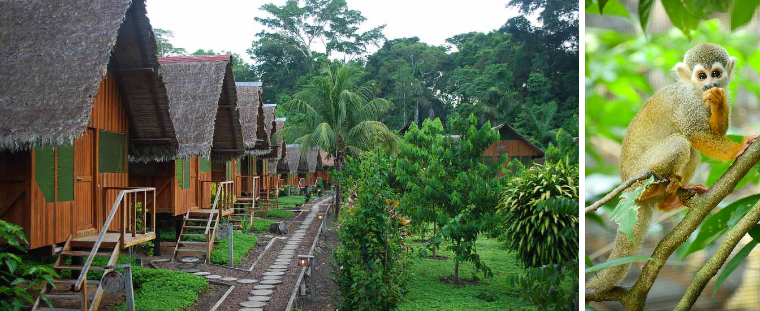 Eco Amazonia Lodge i perus jungle