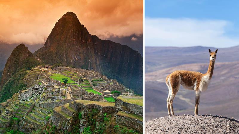Rejs til Peru med Kulturrejser Europa