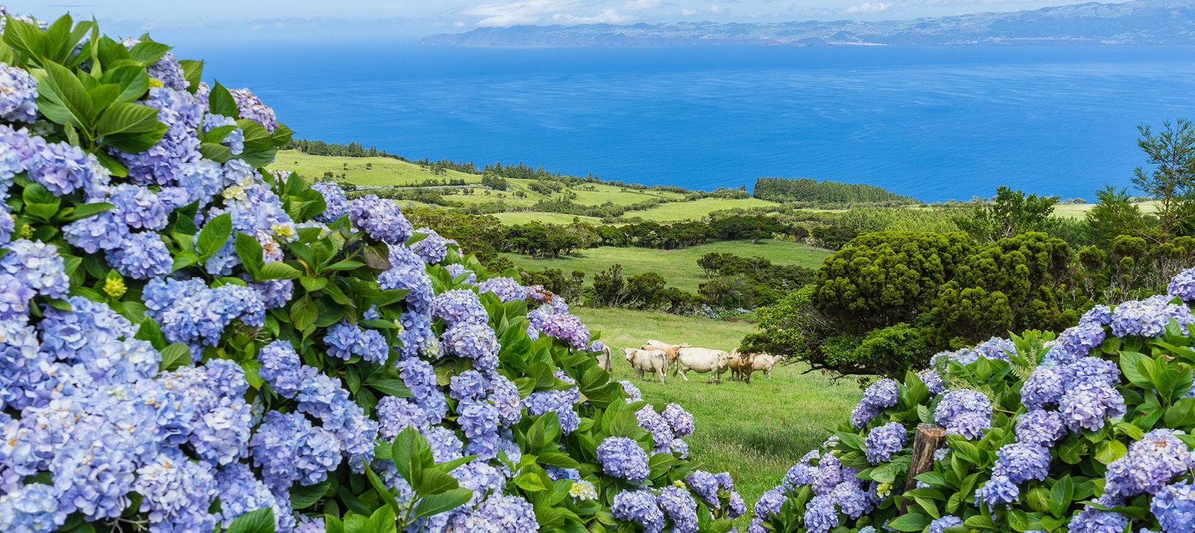 azorerne et naturligt paradis header stor
