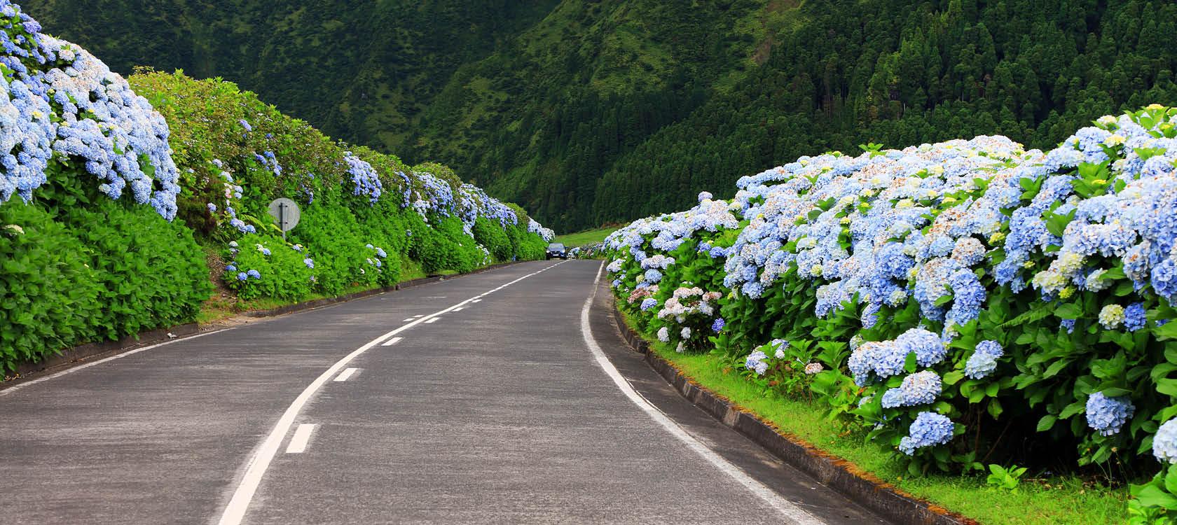 Oplev Azorerne og Madeira med Kulturrejser