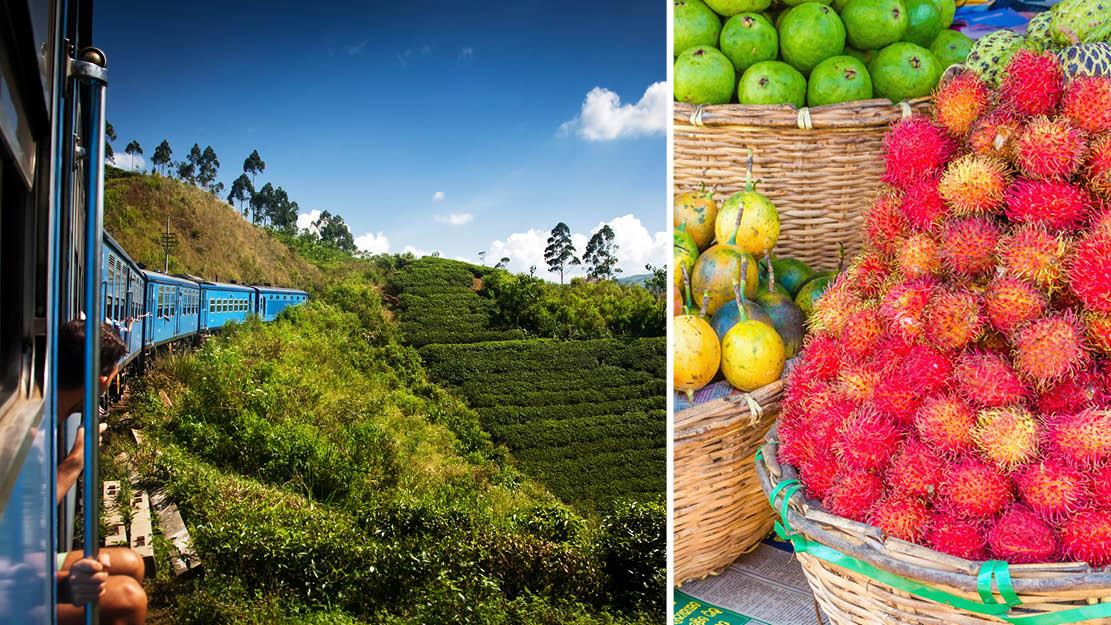 Tog samt tropiske frugter Sri Lanka